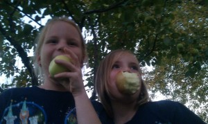 Paige and Scout apple picking